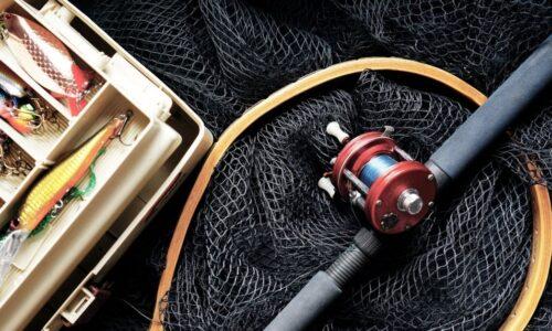 basics niagara fishing